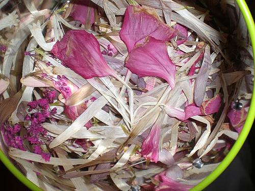 pressed flower petals