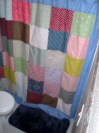 Shower Curtain 1
