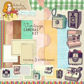 VintageCamerasKit_preview